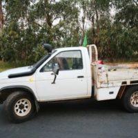 Navara D21 / Terrano 1 Diesel